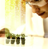 Researchers with unique ideas on helping farmers protect their crops selected as Bayer 2021 Grants4Ag awardees