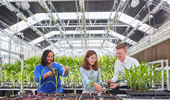 Bayer Fueling Growth Opportunities for Sustainable Agriculture Through Collaborative Innovation Model